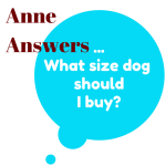 what size dog